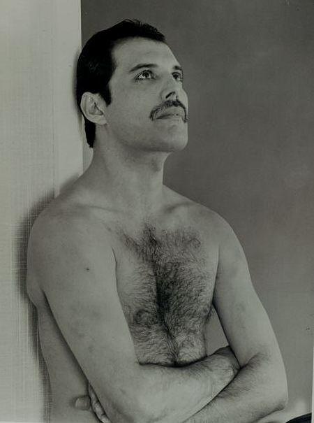 http://www.mercuryparadise.com/images/Freddienak.jpg
